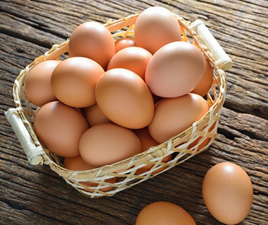 Farm Fresh Eggs - Clearwater Farm