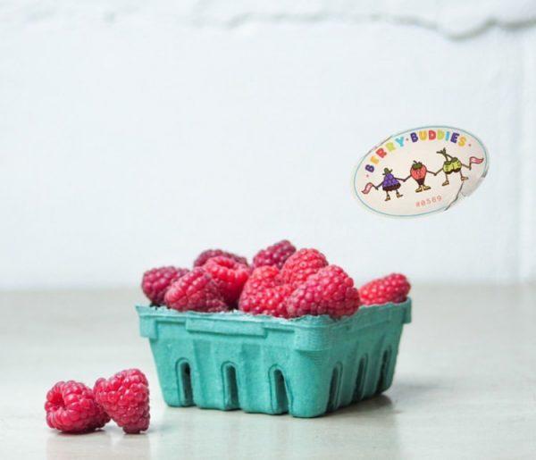 RaspberriesEarly